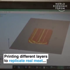 Israeli Jews Promote Fake Meat Produced From a 3D Printer at Klaus Schwabs World Economic Forum.mp4