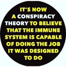 its-now-a-conspiracy-theory-to-believe-immune-system-capable-of-doing-job-designed-to-do.png